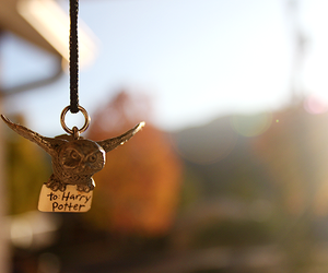 harry potter, owl, and necklace image