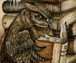 books and owl image