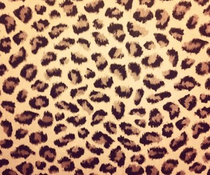 art, leopard, and trendy image
