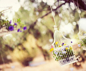 birdcage, flowers, and decoration image