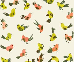 birds and background image