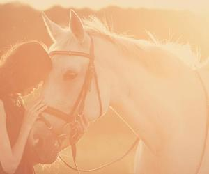 cheval, girl, and love image