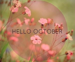 october, hello, and flowers image