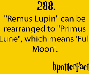 harry potter, hpotterfacts, and fact image