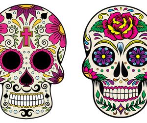 caveira mexicana image