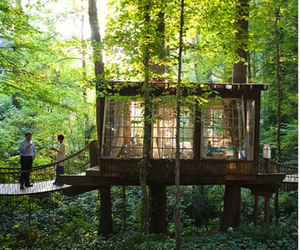 architecture, beautiful, and forest image