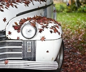 car, vintage, and autumn image