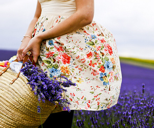 basket, field, and girl image