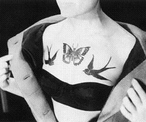 butterfly, bird, and girl image