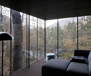 forest, woods, and livingroom image