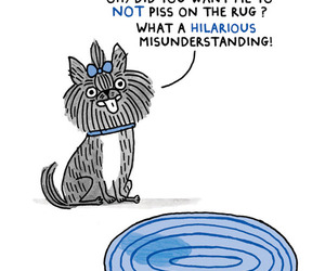 dog, hipster, and gemma correll image
