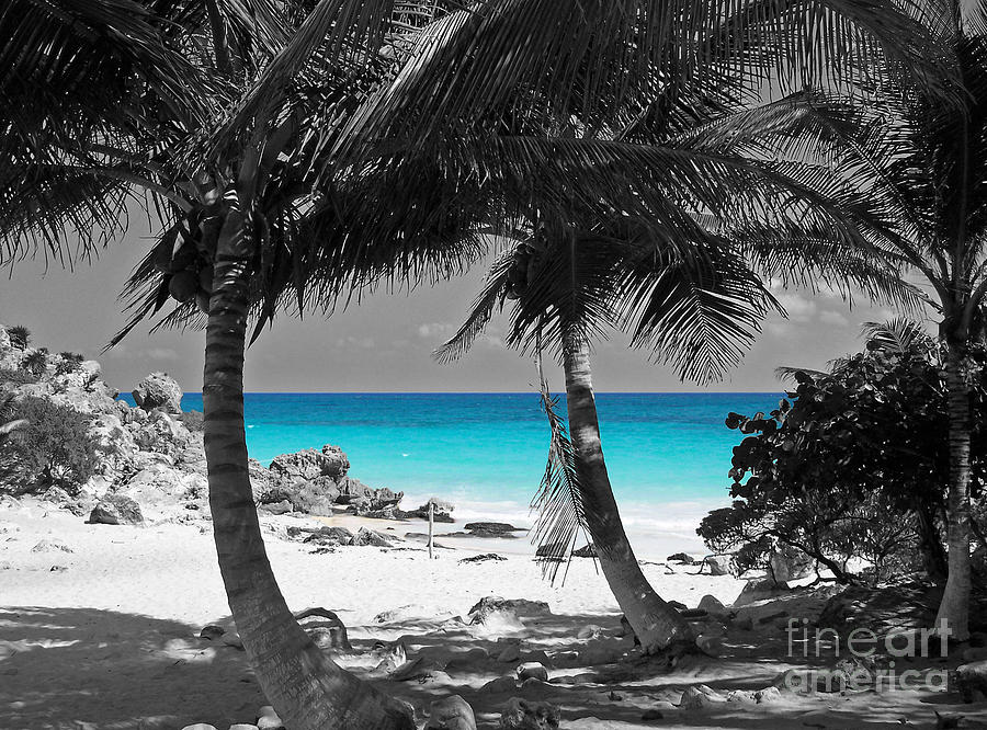 Black and white photography with color splash google search