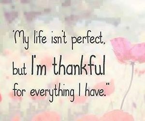 life, thankful, and quotes image