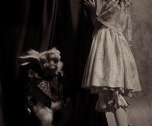 alice, alice in wonderland, and rabbit image