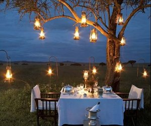 romantic, light, and dinner image