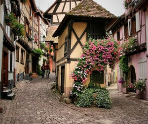 flowers, france, and house image