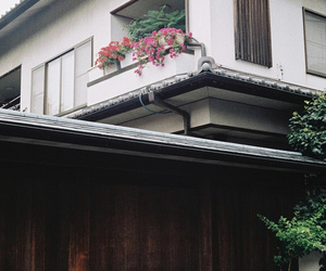 asia, flowers, and house image