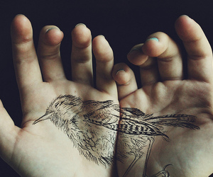 bird, tattoo, and hands image