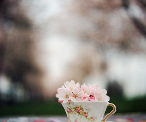 cup, flowers, and cerezo image