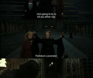 favorite, harry potter, and mcgonagall image