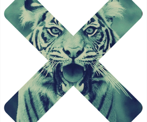 cross and tiger image