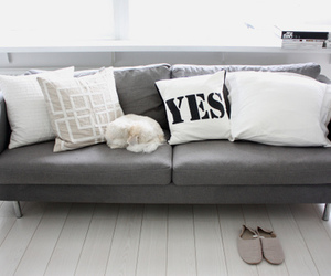 couch, luxury, and gray image