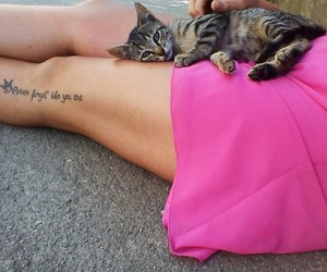 legs, tattoo, and cat image