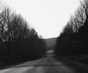 b & w, long walk, and black and white image