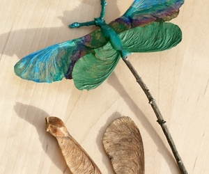 diy and dragonfly image