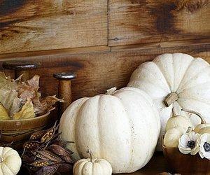 autumn, fall decor, and white pumpkins image