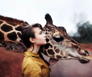 giraffe, girl, and animal image