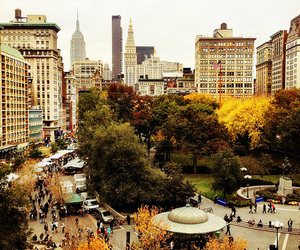 fall, new york, and place image