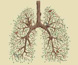 tree, lungs, and art image