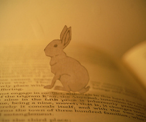book and rabbit image
