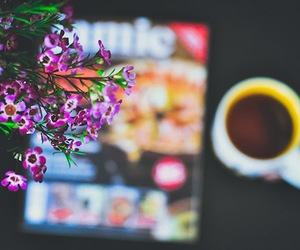 beautiful, coffee, and flower image