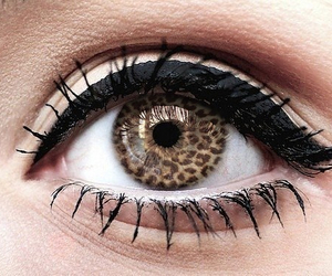eyes, increible, and rawr image
