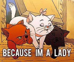 lady, cat, and disney image