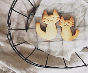 <3, ❤, and cat image