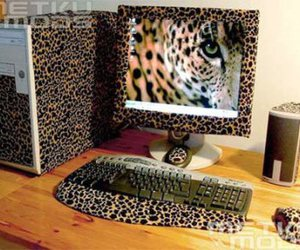 computer and leopard image
