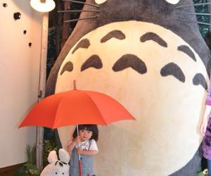 totoro and japan image