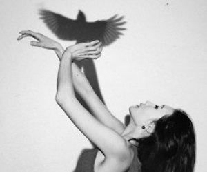 girl, bird, and ombre image