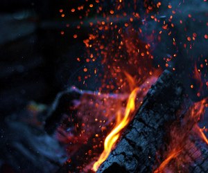 fire, night, and nature image