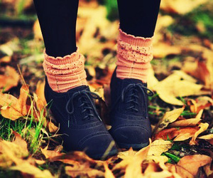 autumn, shoes, and leaves image