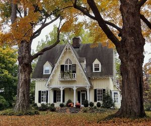 autumn, beautiful, and victorian house image