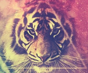 brave, tiger, and collor image