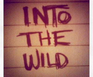 into the wild, movies, and notes image