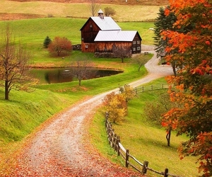 autumn, nature, and house image