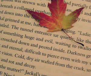 book, leaf, and pretty image