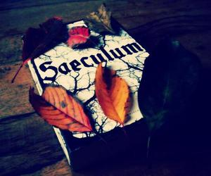 book, leafs, and saeculum image