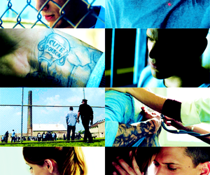 blue, prison break, and wentworth miller image